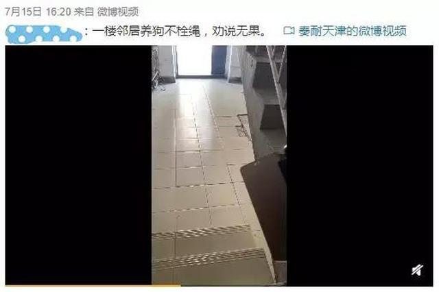 网友录像取证狗不栓绳的不文明行为!怒赞