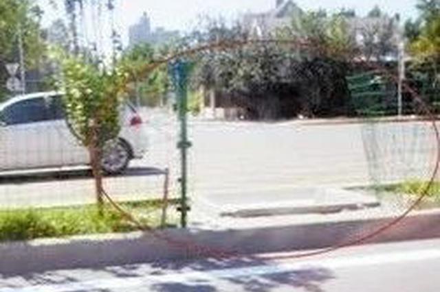 卫津南路上隔离护网被扒 有人为抄近路横穿