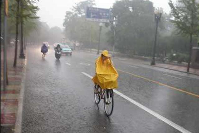 """今年""""三伏""""降雨偏多 """"中伏""""高温日数和降雨量为近十年之最"""