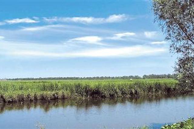 天津9个村庄2025年搬迁完成 大黄堡湿地将形成无人区