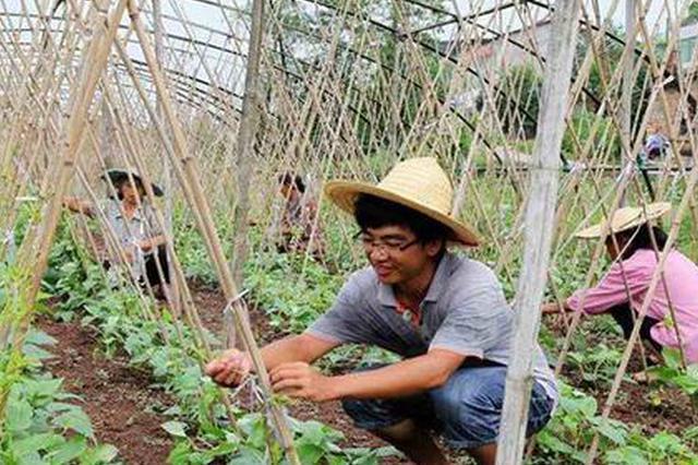 天津农村创业创新推动产业升级 年营业收入65亿元