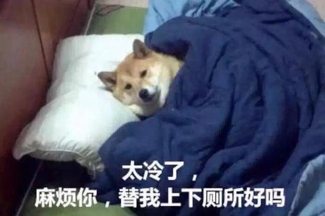 """12月7日迎""""大雪""""节气 天气更冷"""
