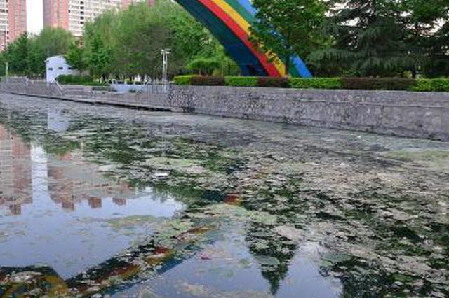 2020年改造567条水体 天津将彻底告别黑臭水体