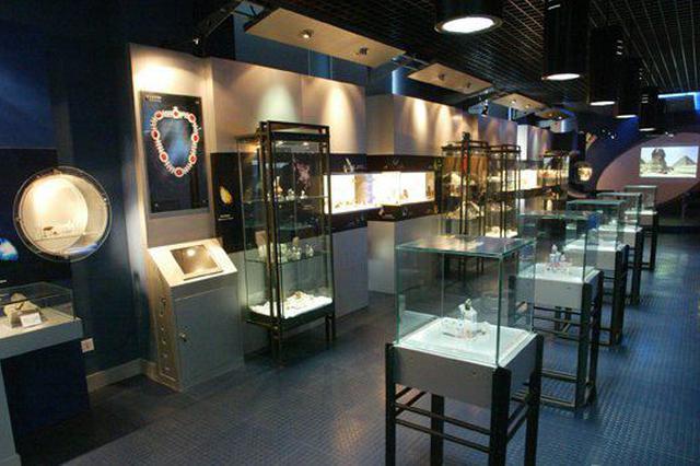 代表委员议政录:高起点规划建设智慧博物馆