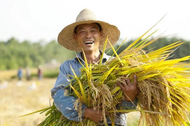 天津:涉农区补贴3.6亿元