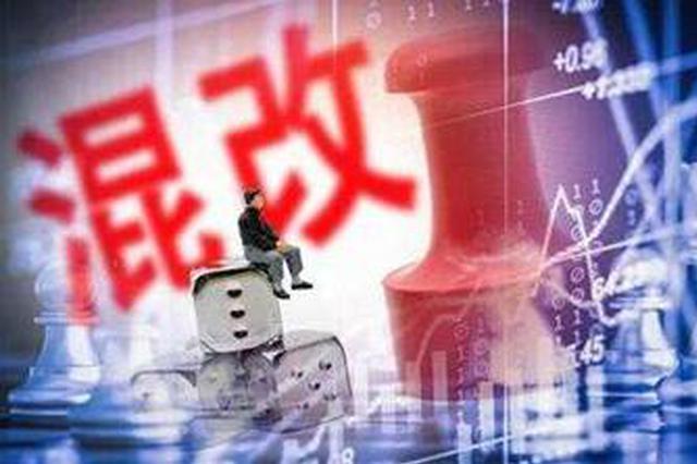 """天津国资第17个市管企业混改项目落地 中环集团与TCL成功""""牵手"""""""