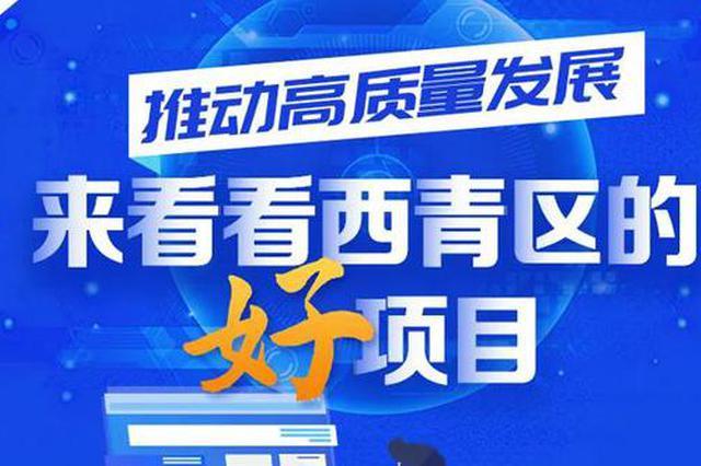 西青区区长白凤祥 跟您聊聊这些好项目