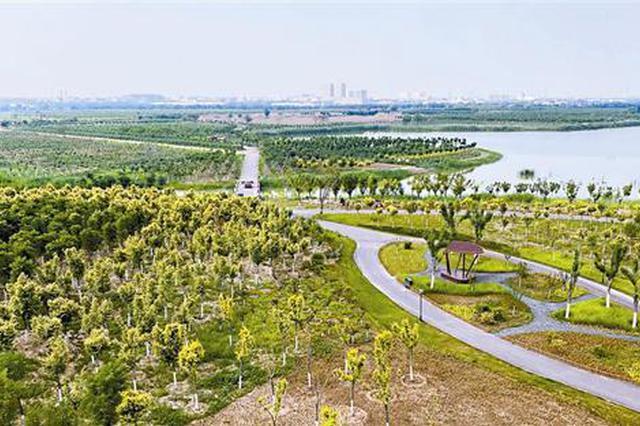 天津双城中间绿色生态屏障初步建成 尽享人与自然和谐共生