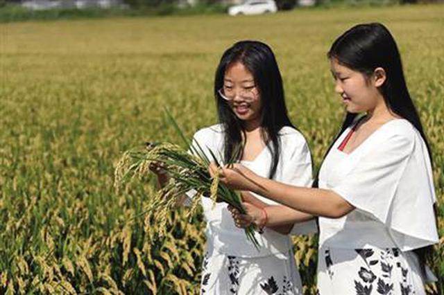 武清区发展现代都市型农业 打造乡村振兴示范带