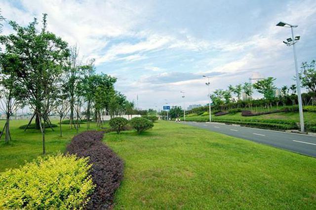 天津加快推进绿化建设 新建提升各类绿地241万平方米