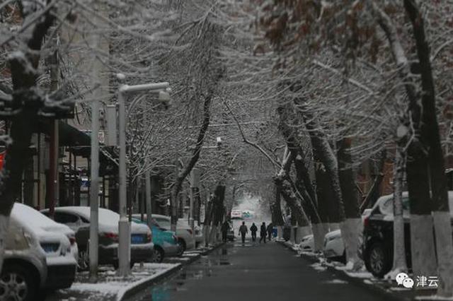 """天津雪景图新鲜""""到货""""!路面情况如何?高速、机场受影响吗"""