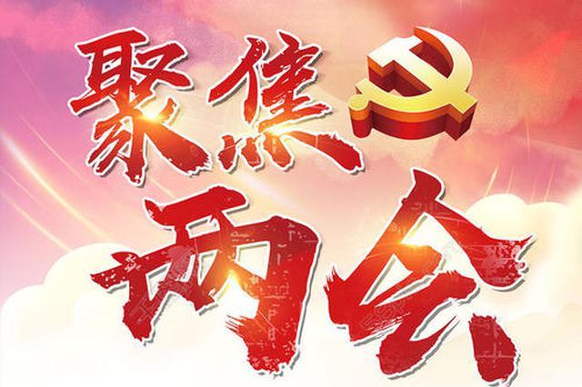 凝聚复兴伟力 奋进伟大征程 ──热烈祝贺十三届全国人大四次