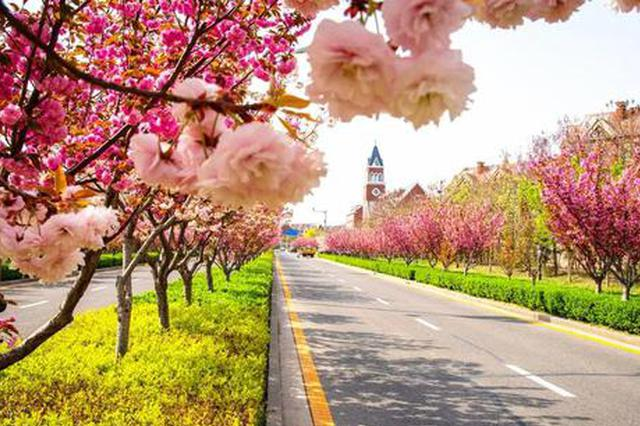 津城本周初夏感觉 最高气温将达28℃