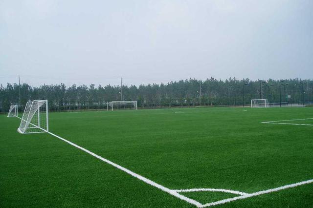 """家门口过""""足""""瘾!天津城市社区都将配建足球场地"""