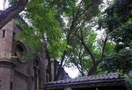 望海楼教堂历史遗迹