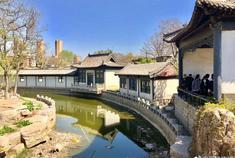 西沽公园满园春色