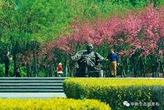 生态城绿廊生态谷公园