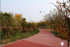 初冬的浙江快三app客户端下载—主页-彩经_彩喜欢立郊野公园