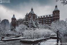 晶莹剔透的天津雪景