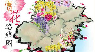 津城赏花路线图