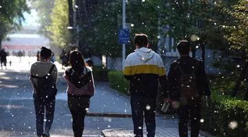 """天津又要""""下雪""""了"""
