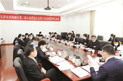 新区人大代表分组审议政府工作报告