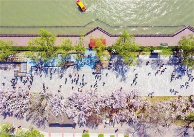 水上公园迎来客流高峰,市民游园踏青,尽享惬意假期。 本报记者 胡凌云 通讯员 王英浩 摄