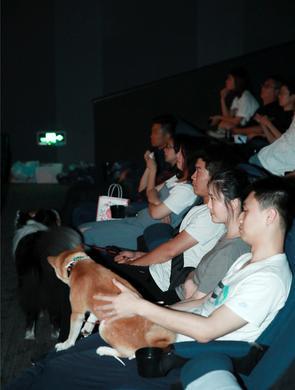 """""""铲屎官""""带上狗狗看电影"""