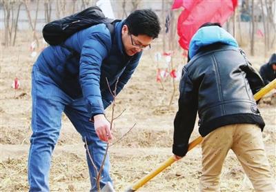 """宁河区昨天在齐心生态园举办""""爱在春天 亲近自然""""植树节活动。"""