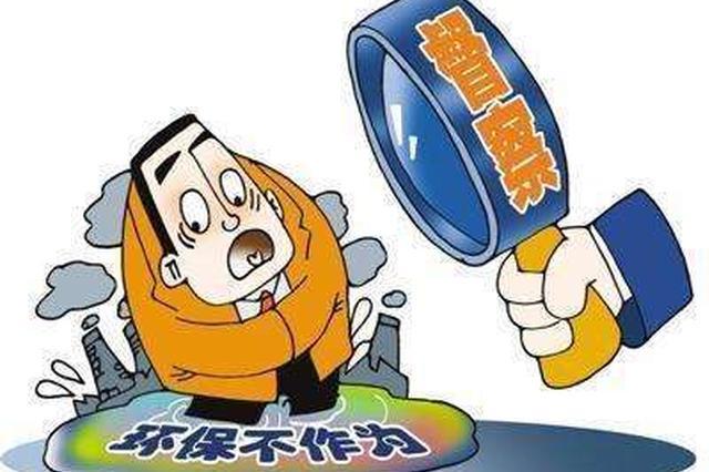 天津市环保问题边督边改12月8日公开信息