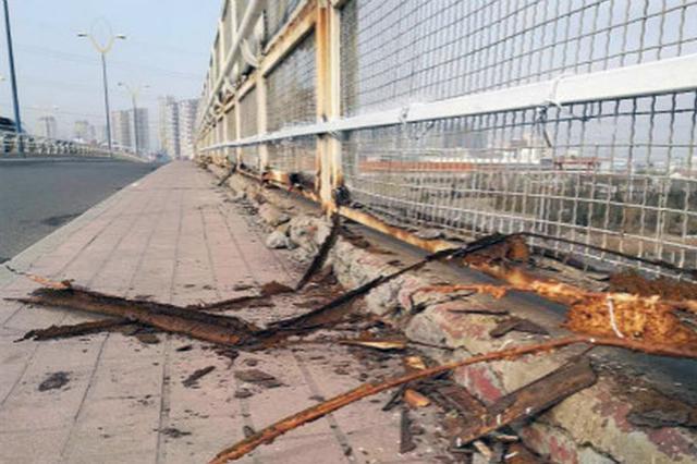 第五大街近百米长桥上防护网腐蚀严重摇摇欲坠
