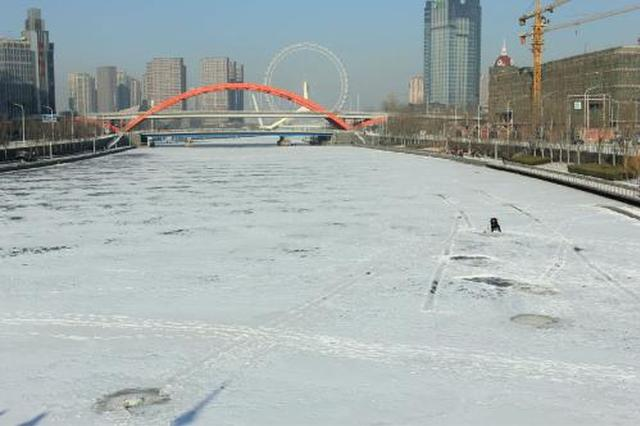 17日最高温7℃依旧暖如春 津城初雪仍没影儿