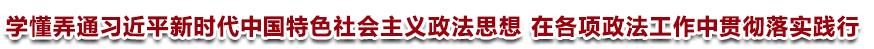 学懂弄通习近平新时代中国特色社会主义政法思想<br>在各项政法工作中贯彻落实践行