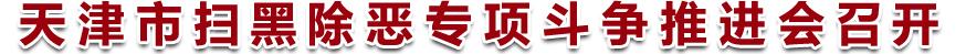 天津市扫黑除恶专项斗争推进会召开