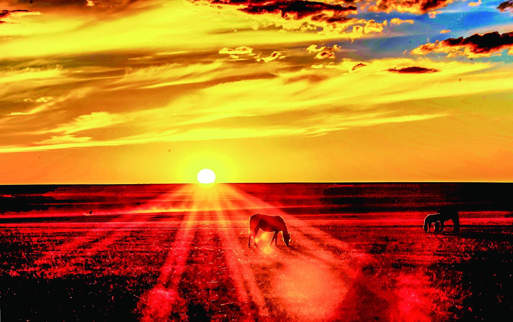 摄影作品:草原落日