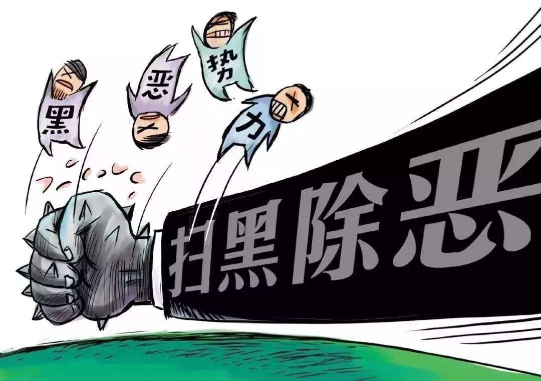 赵克志:扎实抓好扫黑除恶各项措施的落实