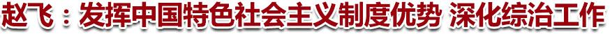 赵飞:发挥中国特色社会主义制度优势 深化综治工作