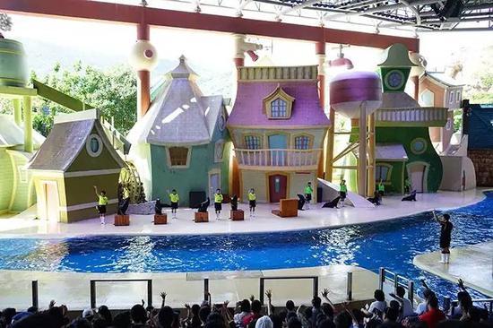 来到海狮剧场,以海狮海象表演为主,演员及驯演师配合表演,跳圈,仰卧起坐。