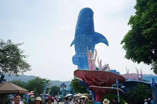 据说是世界最大的鲸鲨馆