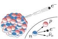 束缚在原子核中的中子及自由中子的衰变。图片来源:Wikipedia
