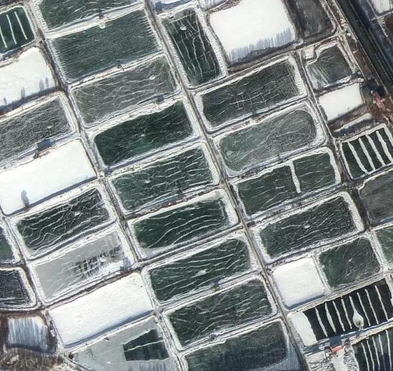 欢乐溜冰场-影像上可清晰看到湖面滑冰痕迹