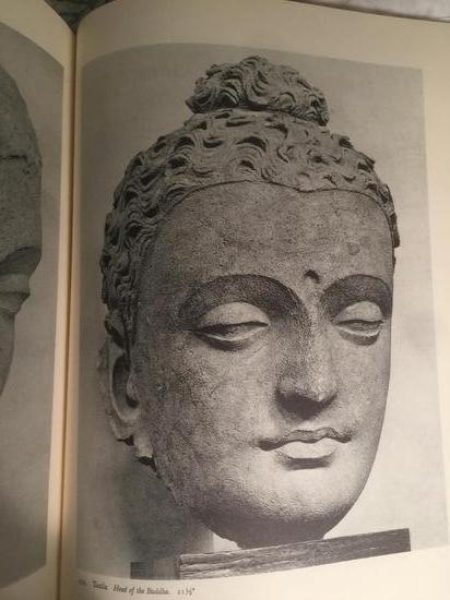 犍陀罗雕像面部特写