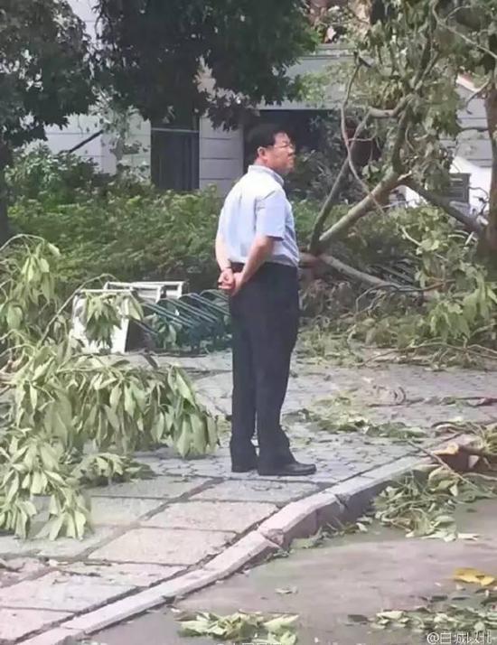 台风过后,一组厦大校长背影的照片在网上走红。老校长在楼前彷徨,神情凝重,满脸心事,惹人心疼……