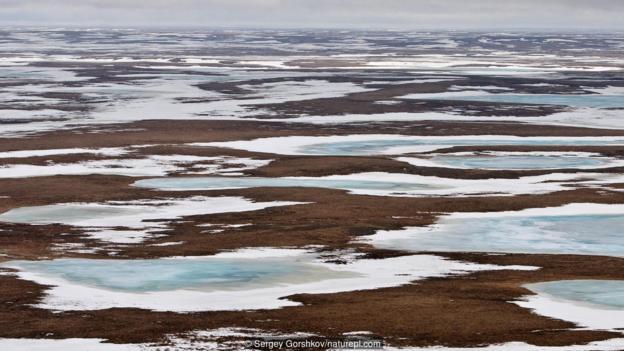 图为西伯利亚部分冰冻的荒原。