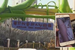 沈阳两幼师涉嫌针扎7名儿童案开庭:两嫌疑人否认