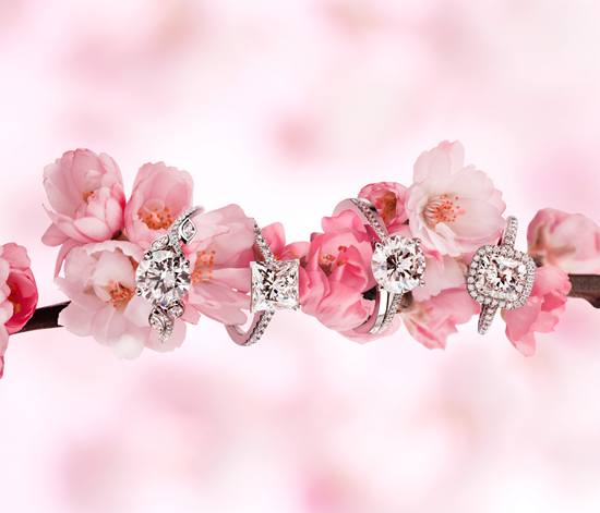 【新珠宝】DE BEERS钻石珠宝璀璨闪耀2014婚礼季