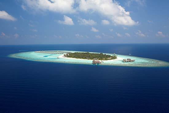 安纳塔拉酒店:马尔代夫驻岛海洋生物学家