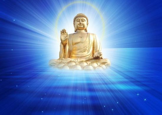 学佛人可以吃燕窝和蜂蜜吗
