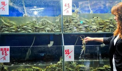 成都青石桥水产市场,大闸蟹今年价格下降幅度较大。