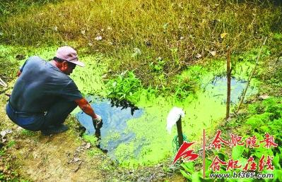 工厂旁农民已不用水沟水灌溉农田